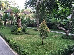 merthayasa bungalow 2 ubud indonesia booking com