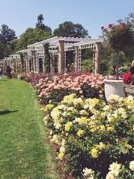 Huntington Botanical Gardens Pasadena by Huntington Library Art Collections U0026 Botanical Gardens San