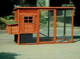 how to build a chicken coop design your own or use ready made