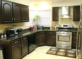 paint kitchen cabinets dark color without sanding or stripping