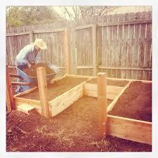 Raised Gardens For Beginners - raised bed organic vegetable garden seedlings gardening