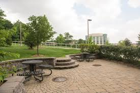 green space sharing the past building the future umbc at 50