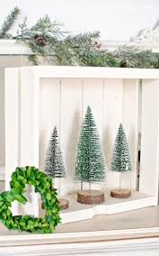 bottle brush trees creative ways to display town country living