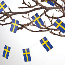 amazon com flags of sweden on strings 2pk outdoor flags