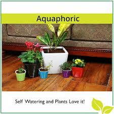 Fiber Soil by Amazon Com Self Watering Planter 7