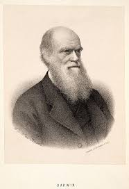 67 best charles darwin images on pinterest charles darwin