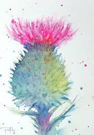 thistle sketch art tutor art pinterest art tutor thistles