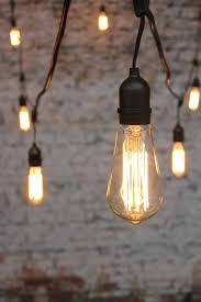 Edison Light Bulbs Best 25 Edison Bulbs Ideas On Pinterest Edison Bulb Chandelier