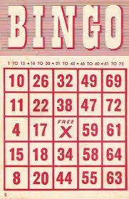 best 25 bingo cards ideas on pinterest printable bingo cards