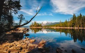 rocky shore wallpapers lake wenatchee state park rocky shore peaceful lake island pine