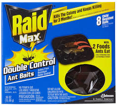 How To Kill Ants In The Kitchen by Safety Is There A Way Of Getting Rid Of Ants That U0027s Safe For My