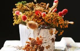 Dry Flowers Preserving The Ornamental Garden How To Dry Flowers Leaves