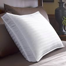 Pacific Coast Feather Bed Pacific Coast 300tc Down Pillow Collection