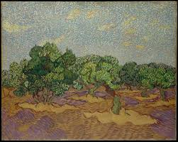 vincent van gogh olive trees the met