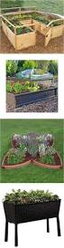 Greenes Fence Raised Beds by Best 25 Raised Garden Bed Kits Ideas On Pinterest Raised Bed