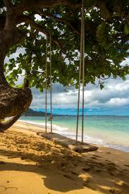 giant swing on oahu oahu pinterest oahu oahu hawaii and hawaii
