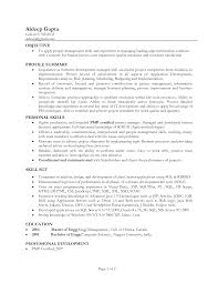 Sample Finance Manager Resume by Cv Profile Examples Project Manager