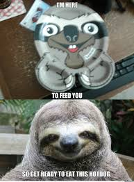 Sloth Meme Rape - rape sloth meme 100 images 12 funny rape sloth memes that will