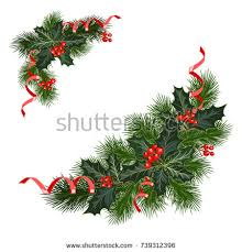 decorations fir tree berries stock vector