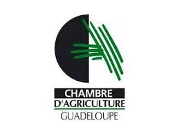 chambre agriculture 87 guadeloupe chambre d agriculture victoire de la fdsea domactu