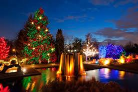 trail of lights denver denver botanic gardens is the most enchanting place in denver