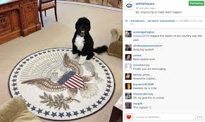 Obama Dog Meme - the white house makes a mean girls joke barack obama know your meme