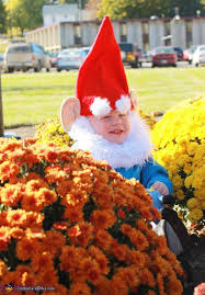 best 25 baby gnome costume ideas on pinterest funny baby