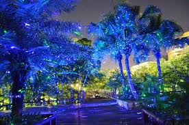 outdoor laser lights reviews laser garden lights blue and green cover waterfall and pool outdoor