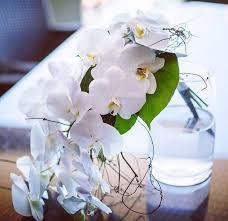 Wedding Flowers Melbourne Wedding Flowers Melbourne Floraleventsmelbourne Com