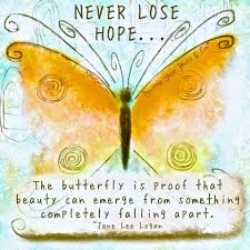 Meaningful Butterfly - butterfly motivation butterfly butterfly quotes