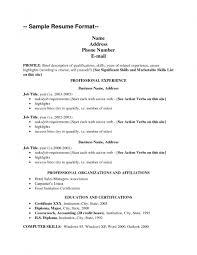 Std Resume Format Best 25 Resume Format Examples Ideas On Pinterest Resume