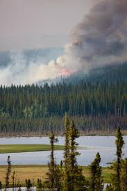 Fires Near Alaska by Eagle Trail Wildland Forest Fire Patrick Endres Photography