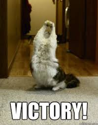 Victory Meme - newbot v2 victory coffee at master 盞 newism newbot v2 盞 github