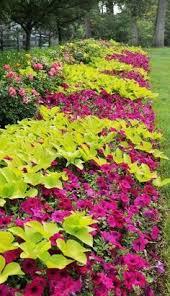 fantastic flower beds gardens put together and designs