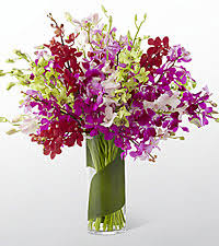 Orchid Flower Arrangements Orchid Flower Arrangements Delivered To Your Door By Ftd