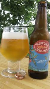 Dogfish Pumpkin Ale by 46 Best Dogfish Head Images On Pinterest Dogfish Head Craft