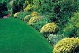 designing with ornamental grasses michigan gardening