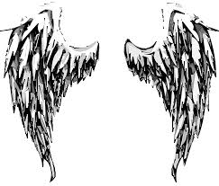 angel wings free pictures on pixabay