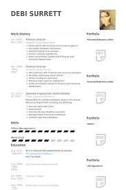 Activity Director Resume Samples by Finance Director Resume Samples Visualcv Resume Samples Database