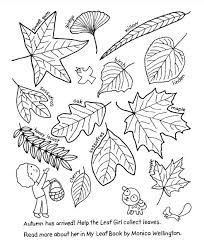 my leaf book free coloring sheet omazing kids