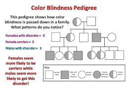 Color Blindness In Children Color Blindness Is A Trait That Is Passed Down From Parents To