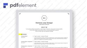 Fill Resume Online Free by Professional Resume Free Download Edit Fill And Print
