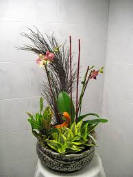 living arrangements pdi plants blog flowering rotational living arrangements