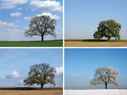 winter season britannica