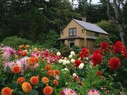 flower garden wallpaper flawer u2013 best wallpaper download