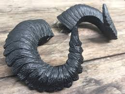 horns for sale ready to ship priority mail now poe pitch