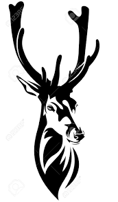 deer head with big antlers black and white realistic vector