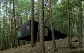 half tree house jacobschang architecture archdaily