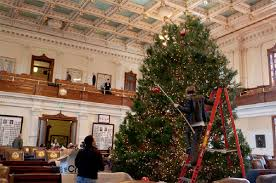 house of representatives tree