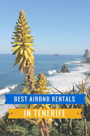 Best Airbnbs In The Us by Top 10 Most Amazing Airbnb Rentals In Tenerife